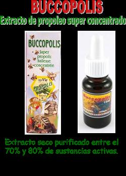 Buccopolis
